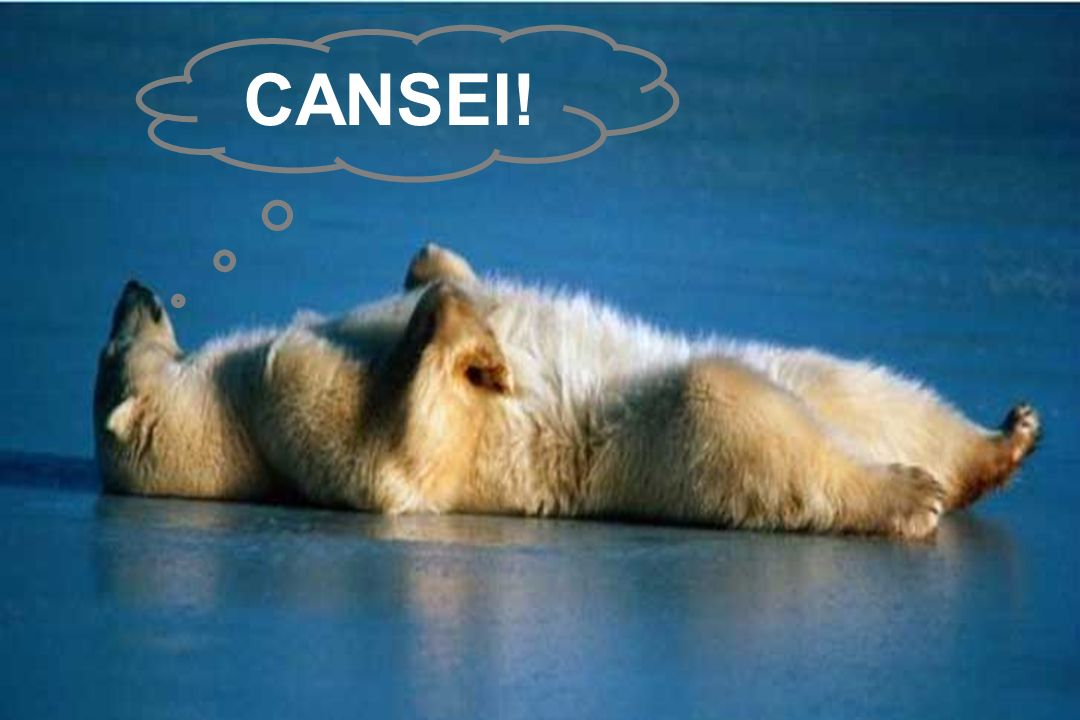 CANSEI!