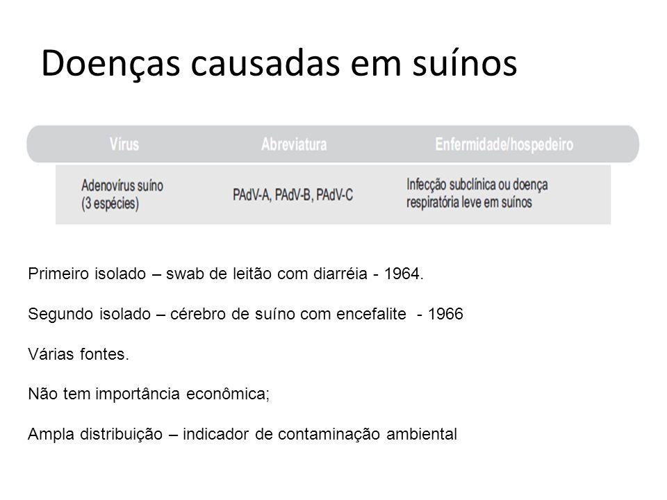 Doenças causadas em suínos