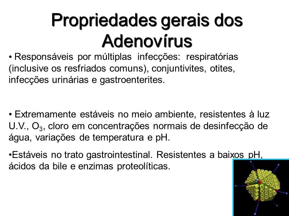 Propriedades gerais dos Adenovírus