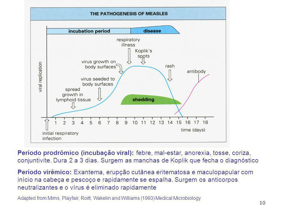 Período prodrômico (incubação viral): febre, mal-estar, anorexia, tosse, coriza, conjuntivite. Dura 2 a 3 dias. Surgem as manchas de Koplik que fecha o diagnóstico