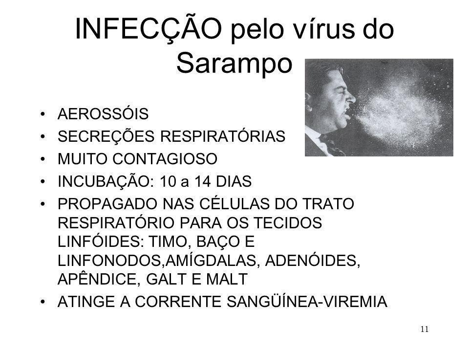 INFECÇÃO pelo vírus do Sarampo