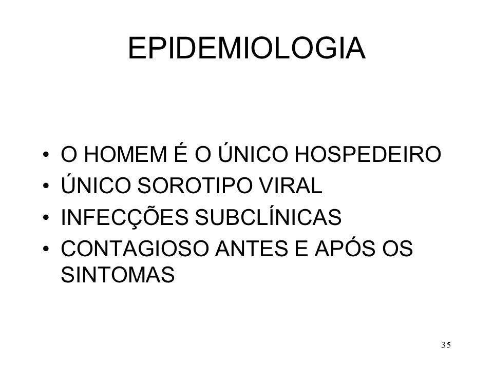 EPIDEMIOLOGIA O HOMEM É O ÚNICO HOSPEDEIRO ÚNICO SOROTIPO VIRAL