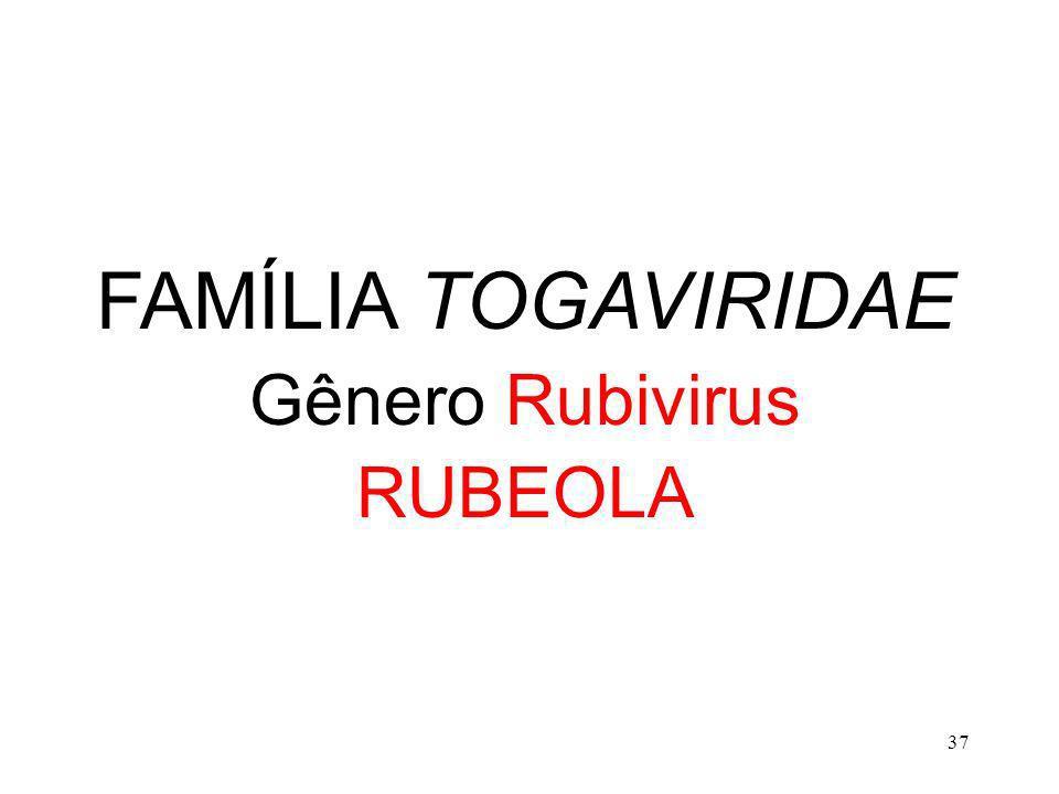 FAMÍLIA TOGAVIRIDAE Gênero Rubivirus RUBEOLA