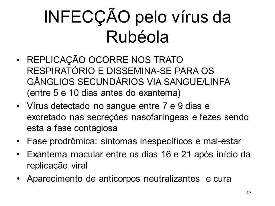 INFECÇÃO pelo vírus da Rubéola
