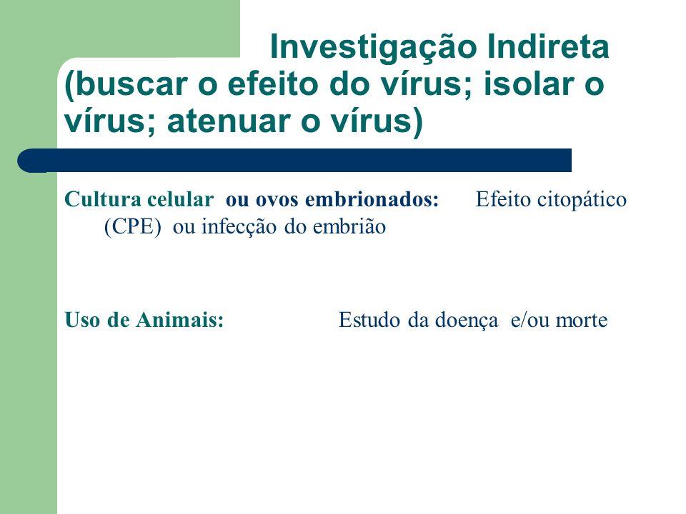 Investigação Indireta (buscar o efeito do vírus; isolar o vírus; atenuar o vírus)