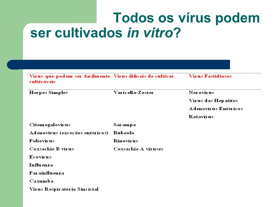 Todos os vírus podem ser cultivados in vitro