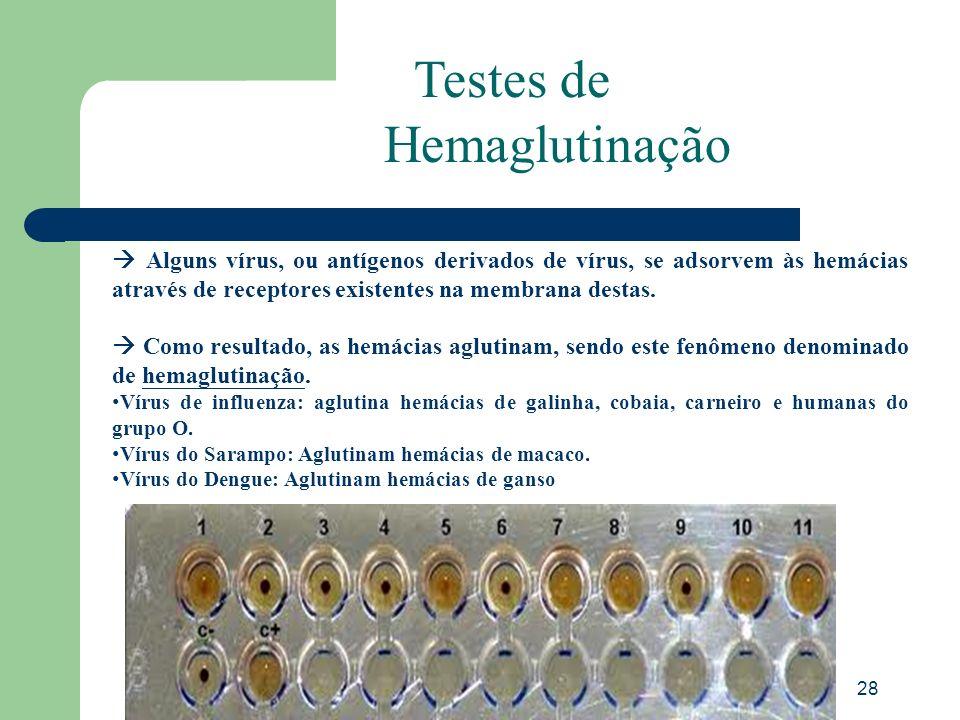 Testes de Hemaglutinação
