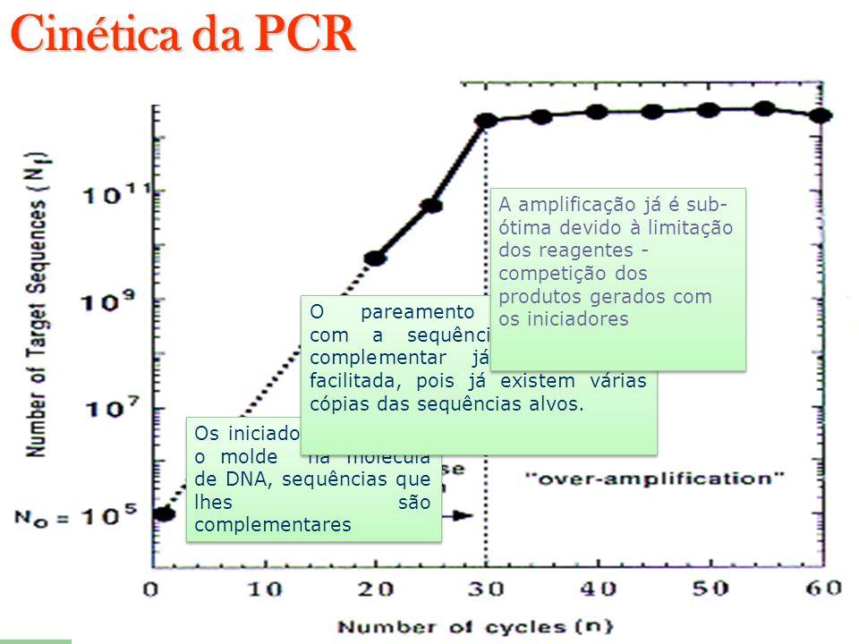 Cinética da PCR A amplificação já é sub-ótima devido à limitação dos reagentes - competição dos produtos gerados com os iniciadores.