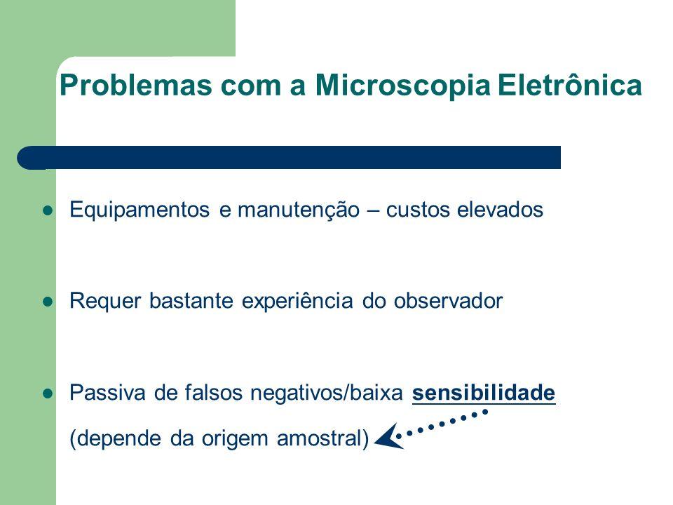 Problemas com a Microscopia Eletrônica