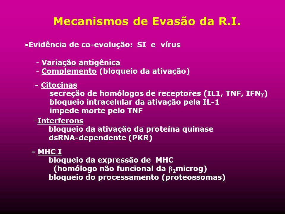 Mecanismos de Evasão da R.I.