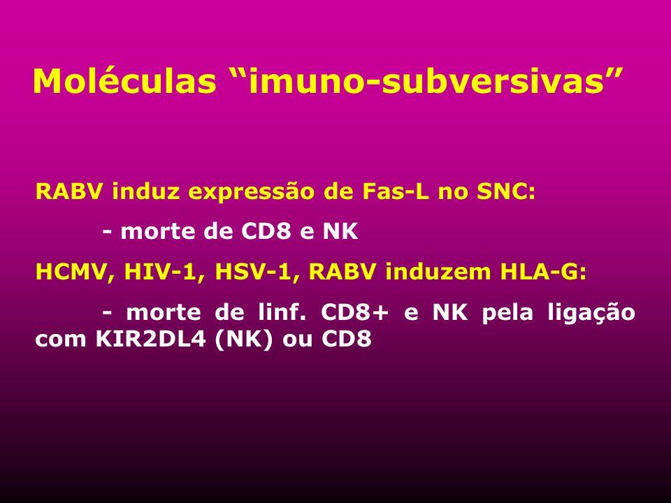 Moléculas imuno-subversivas