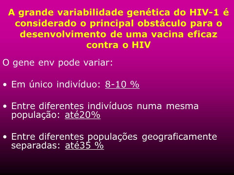A grande variabilidade genética do HIV-1 é considerado o principal obstáculo para o desenvolvimento de uma vacina eficaz contra o HIV