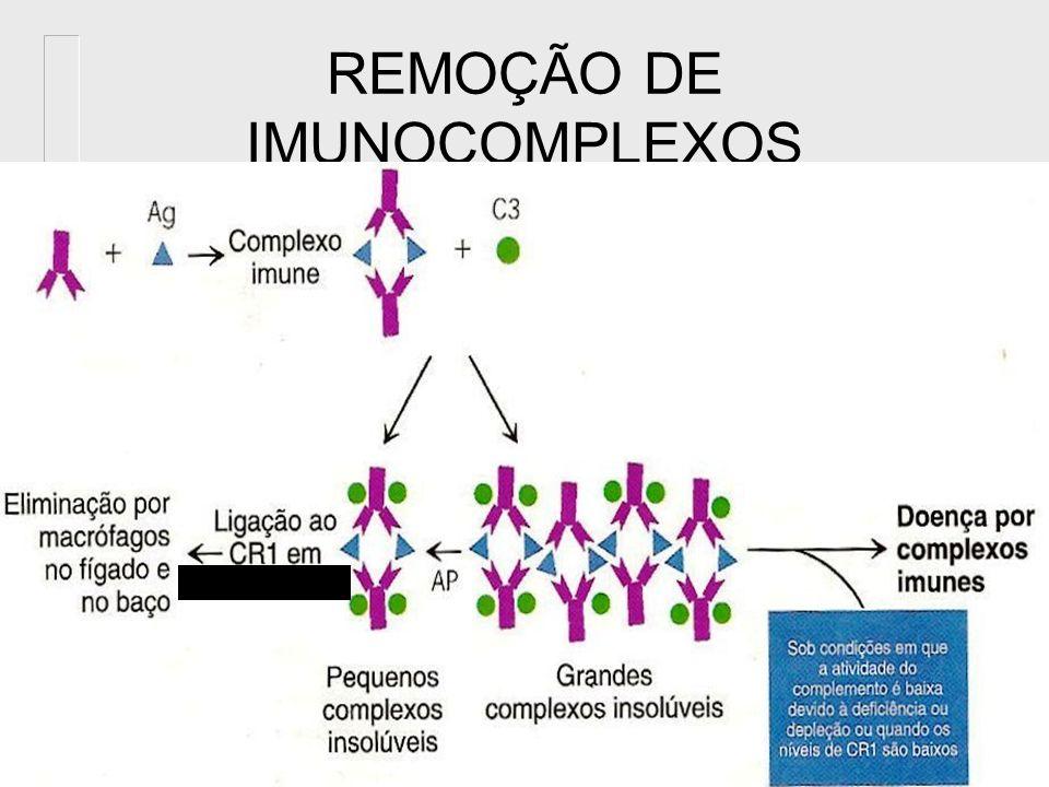 REMOÇÃO DE IMUNOCOMPLEXOS