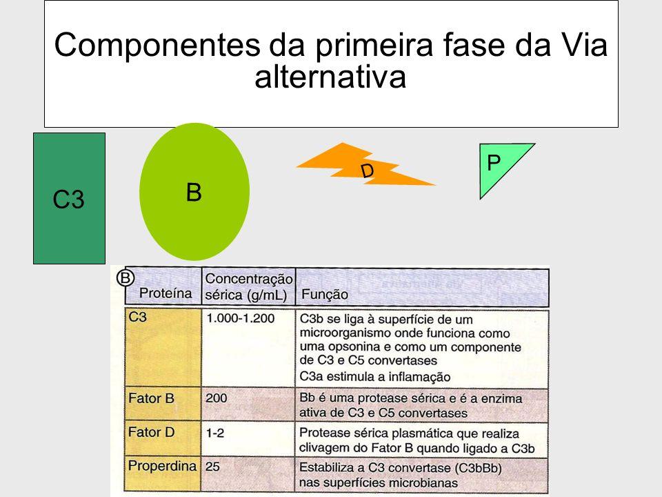 Componentes da primeira fase da Via alternativa