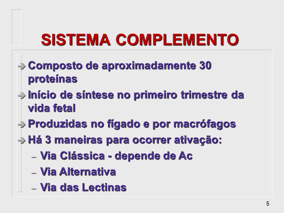 SISTEMA COMPLEMENTO Composto de aproximadamente 30 proteínas