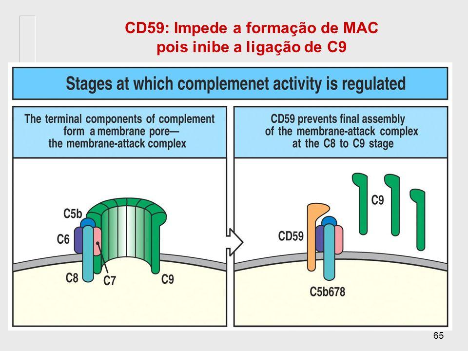 CD59: Impede a formação de MAC pois inibe a ligação de C9