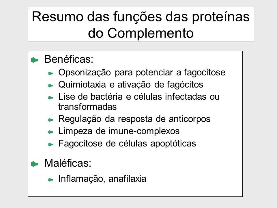 Resumo das funções das proteínas do Complemento