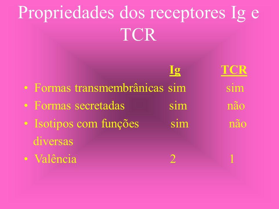 Propriedades dos receptores Ig e TCR