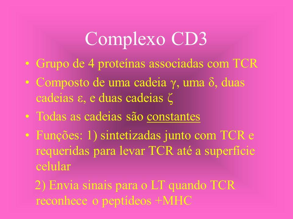 Complexo CD3 Grupo de 4 proteínas associadas com TCR