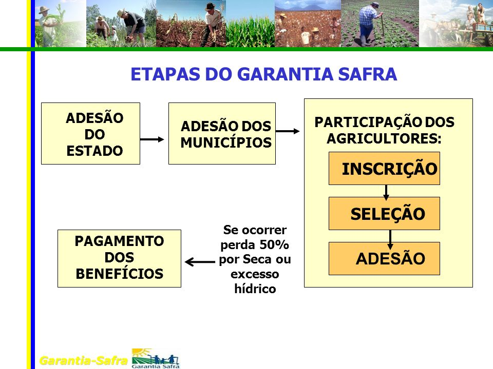 ETAPAS DO GARANTIA SAFRA
