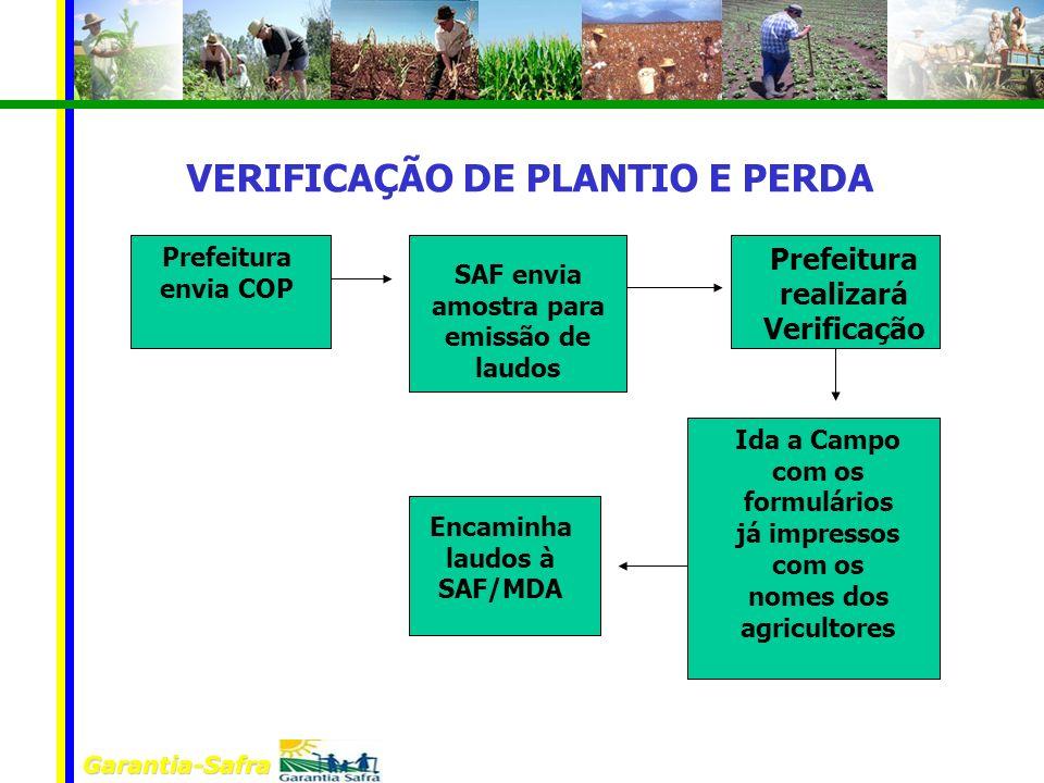 VERIFICAÇÃO DE PLANTIO E PERDA