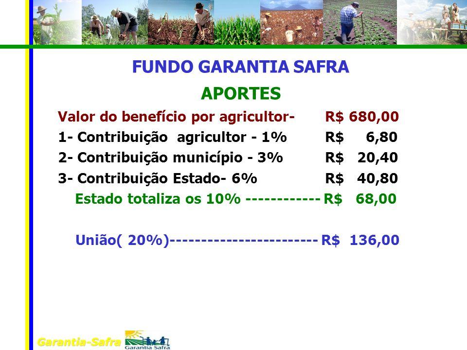 FUNDO GARANTIA SAFRA APORTES