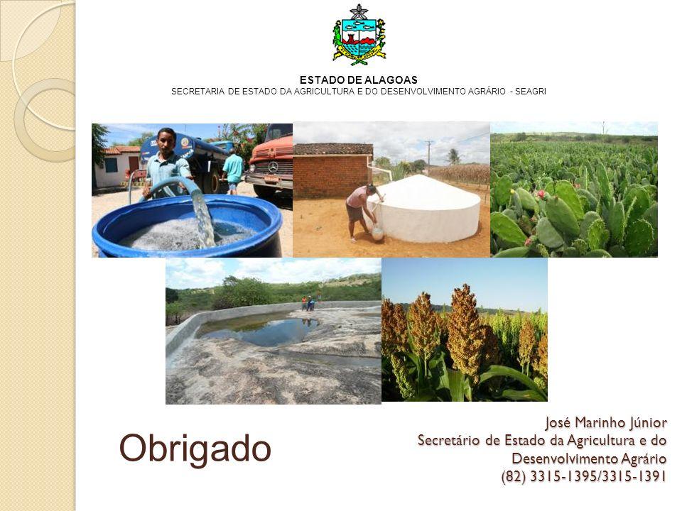 ESTADO DE ALAGOAS SECRETARIA DE ESTADO DA AGRICULTURA E DO DESENVOLVIMENTO AGRÁRIO - SEAGRI.