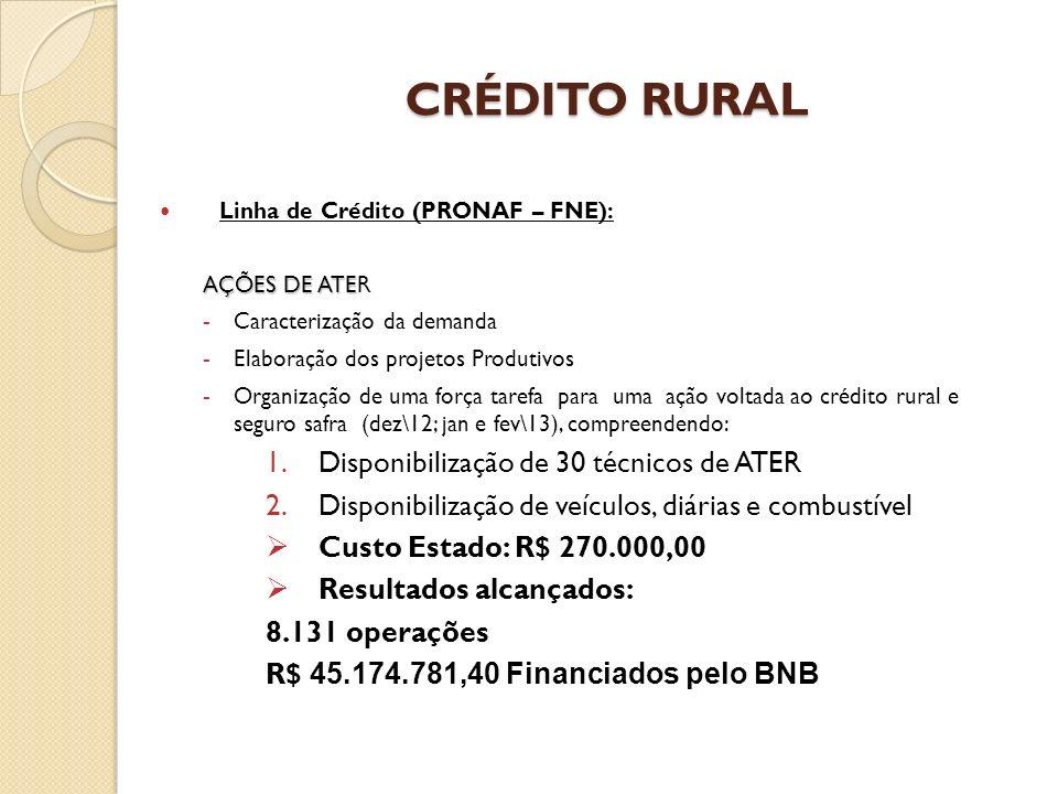 CRÉDITO RURAL Disponibilização de 30 técnicos de ATER
