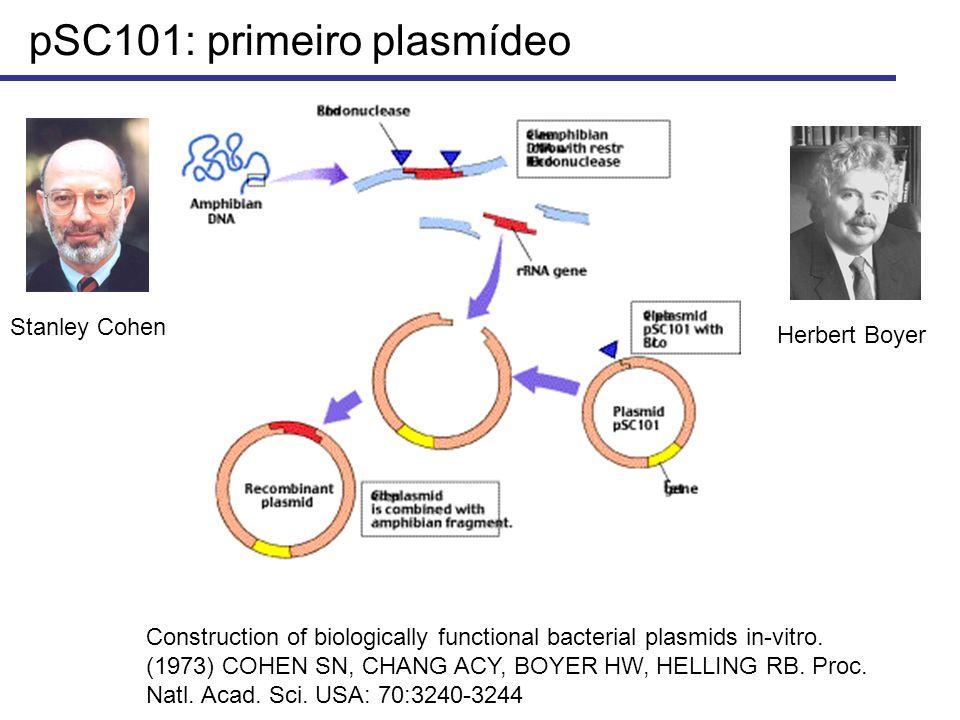 pSC101: primeiro plasmídeo