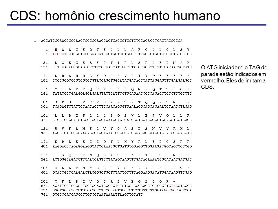 CDS: homônio crescimento humano