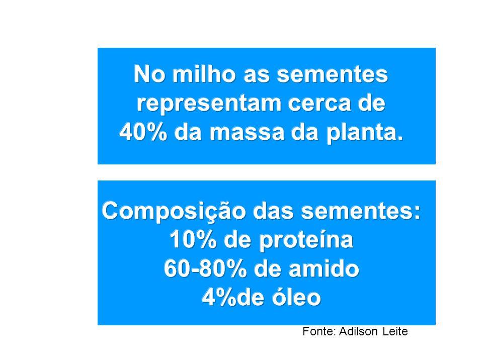 Composição das sementes: