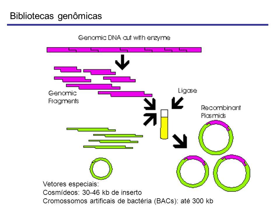 Bibliotecas genômicas
