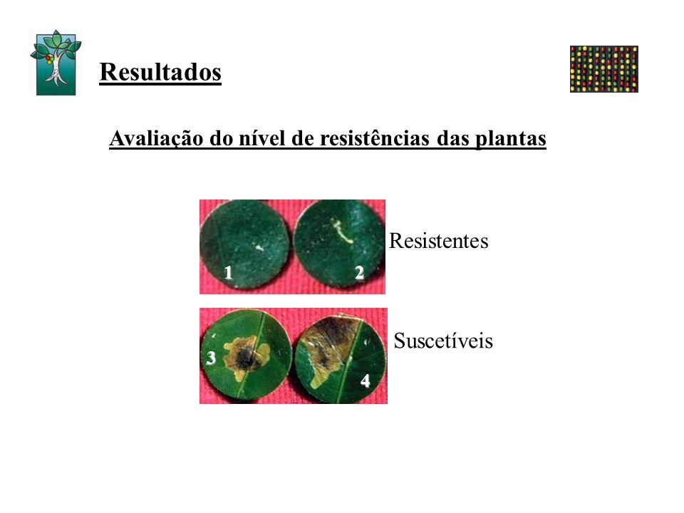 Avaliação do nível de resistências das plantas