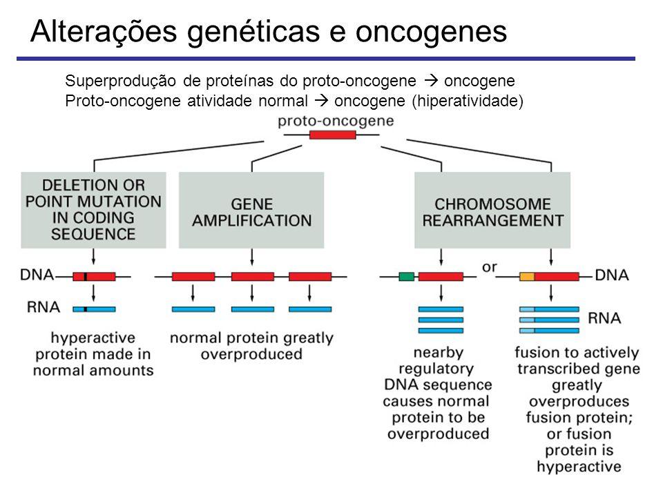 Alterações genéticas e oncogenes