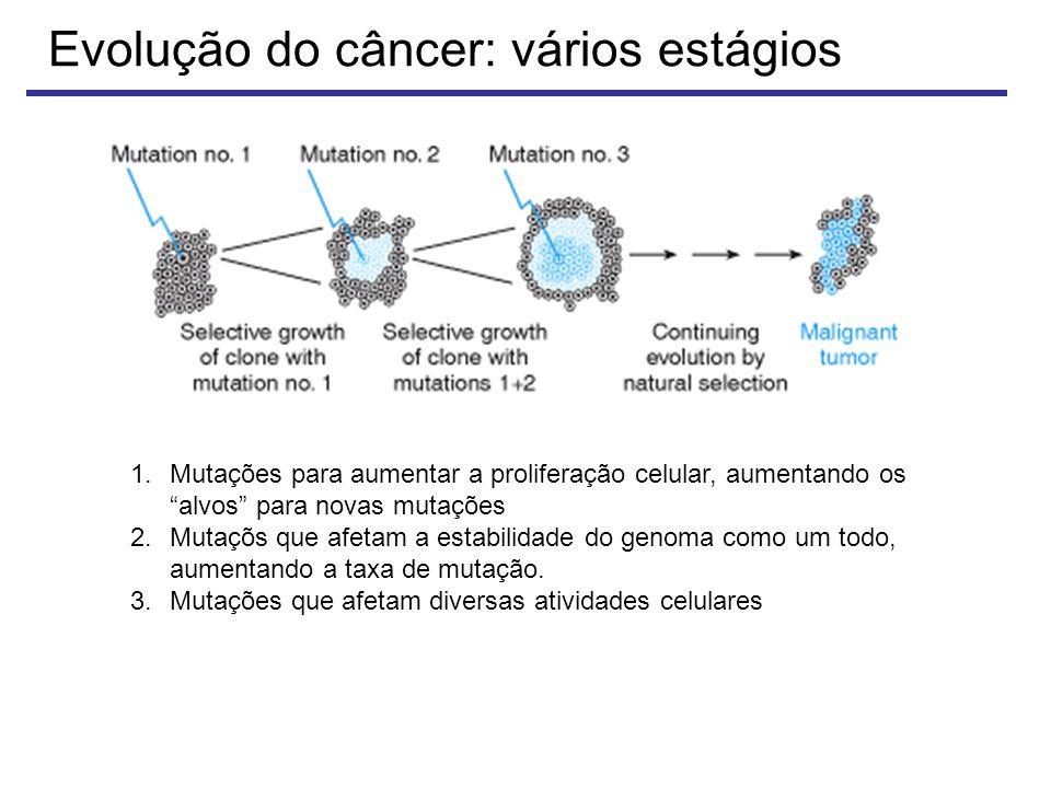Evolução do câncer: vários estágios