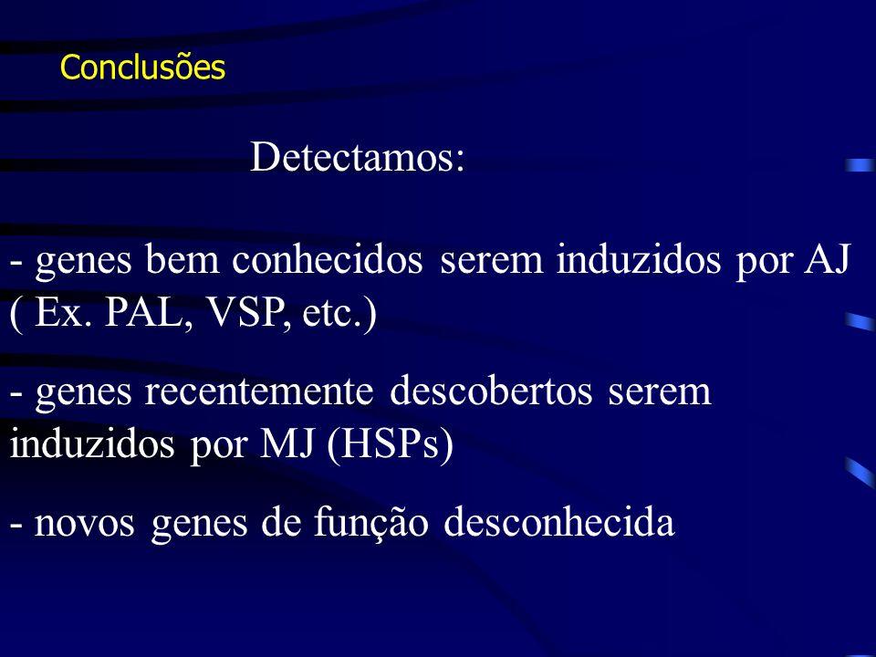- genes bem conhecidos serem induzidos por AJ ( Ex. PAL, VSP, etc.)