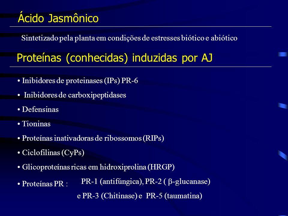 Proteínas (conhecidas) induzidas por AJ
