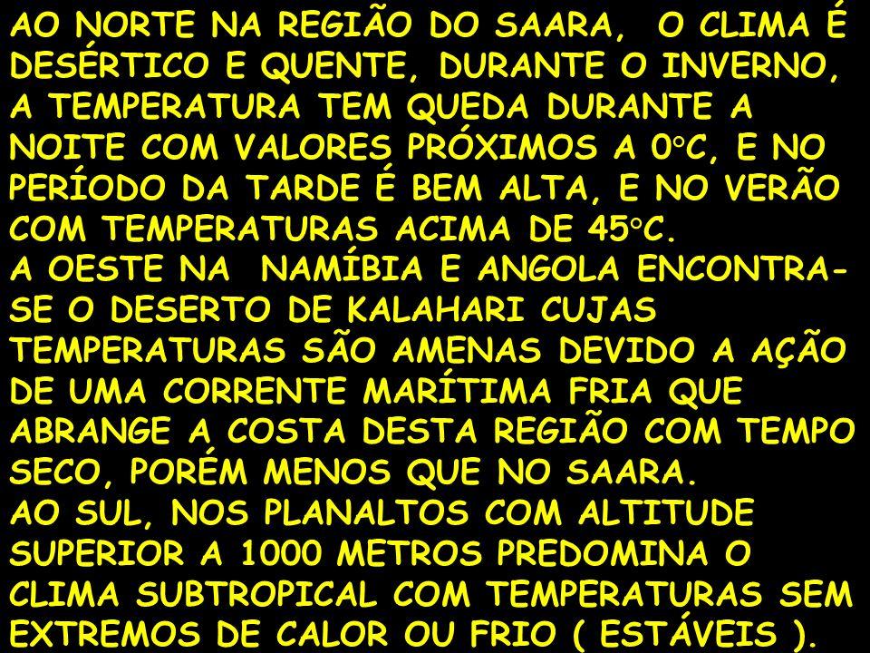 AO NORTE NA REGIÃO DO SAARA, O CLIMA É DESÉRTICO E QUENTE, DURANTE O INVERNO, A TEMPERATURA TEM QUEDA DURANTE A NOITE COM VALORES PRÓXIMOS A 0°C, E NO PERÍODO DA TARDE É BEM ALTA, E NO VERÃO COM TEMPERATURAS ACIMA DE 45°C.