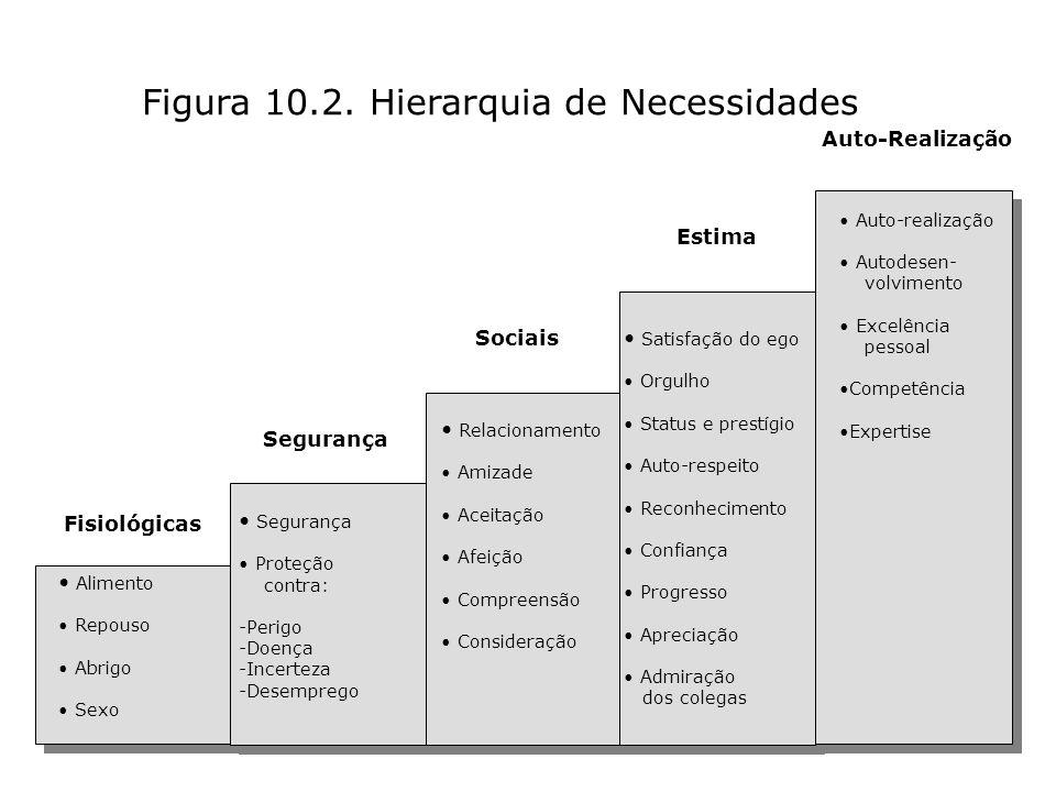 Figura 10.2. Hierarquia de Necessidades