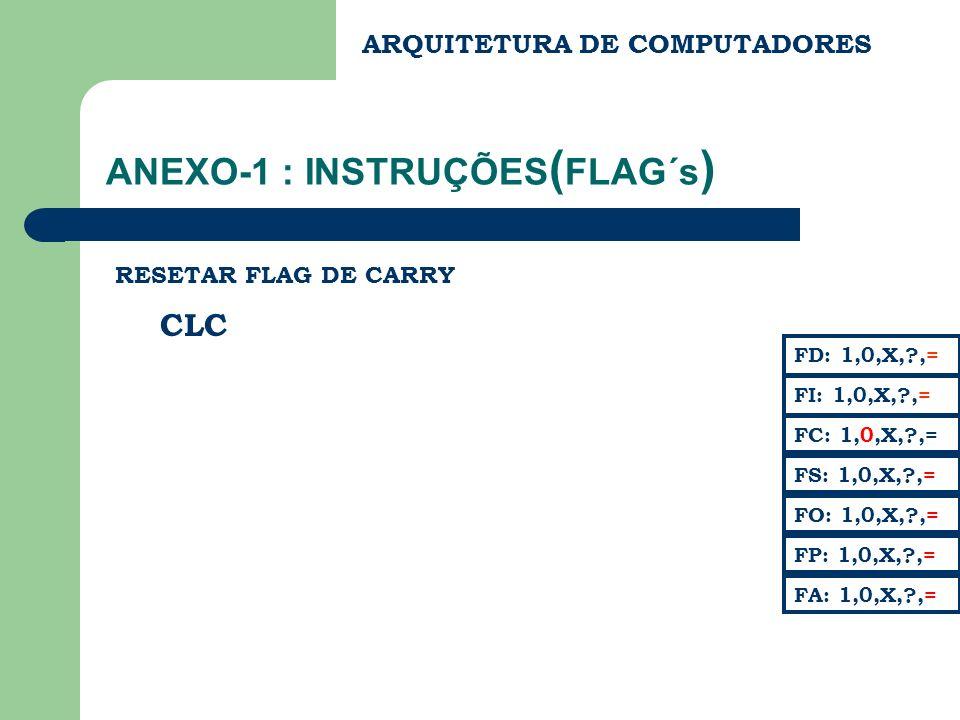ANEXO-1 : INSTRUÇÕES(FLAG´s)