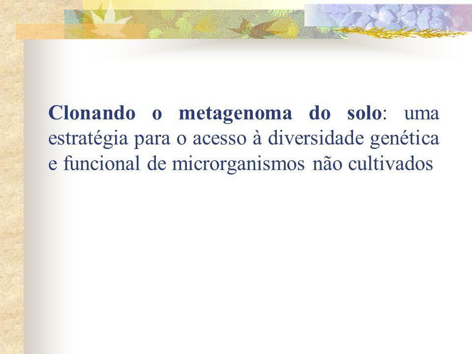 Clonando o metagenoma do solo: uma estratégia para o acesso à diversidade genética e funcional de microrganismos não cultivados