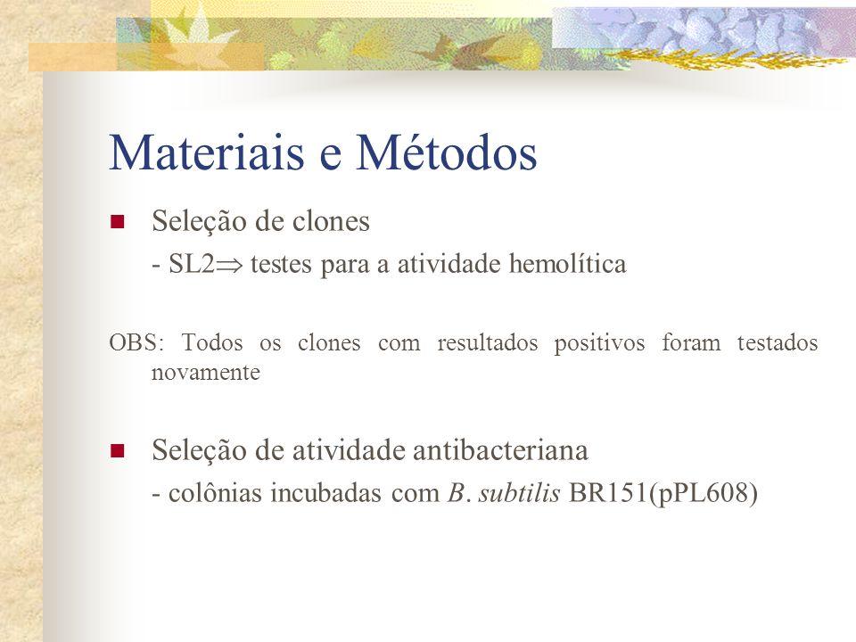 Materiais e Métodos Seleção de clones