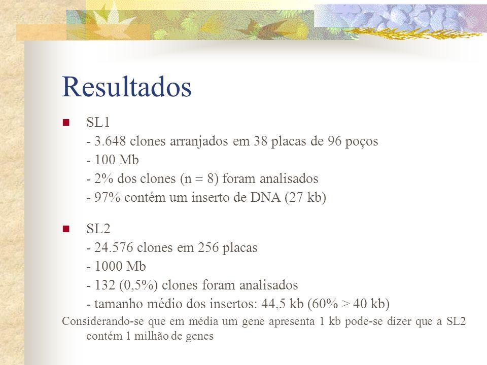 Resultados SL1 SL2 - 3.648 clones arranjados em 38 placas de 96 poços