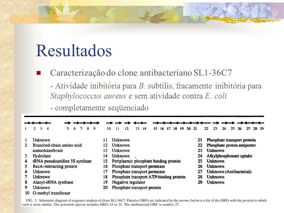 Resultados Caracterização do clone antibacteriano SL1-36C7