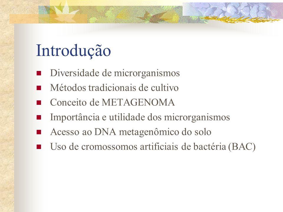 Introdução Diversidade de microrganismos