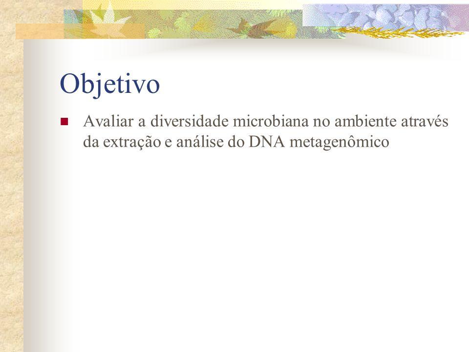 Objetivo Avaliar a diversidade microbiana no ambiente através da extração e análise do DNA metagenômico.
