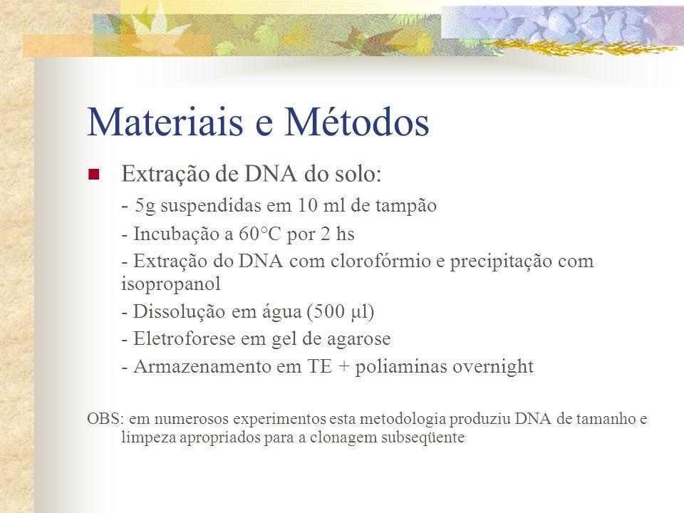 Materiais e Métodos Extração de DNA do solo:
