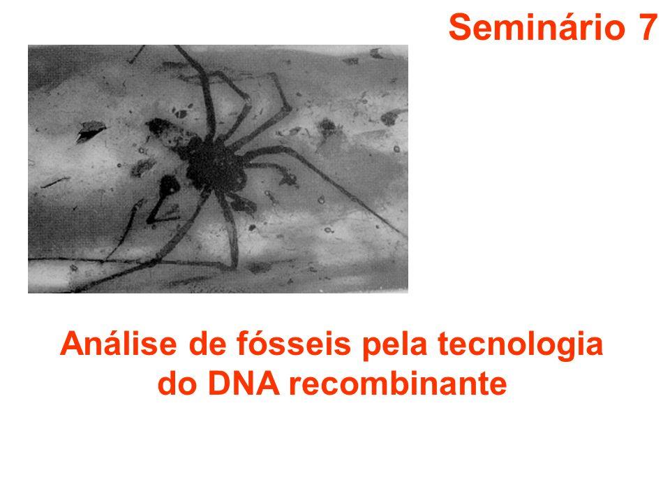 Análise de fósseis pela tecnologia do DNA recombinante
