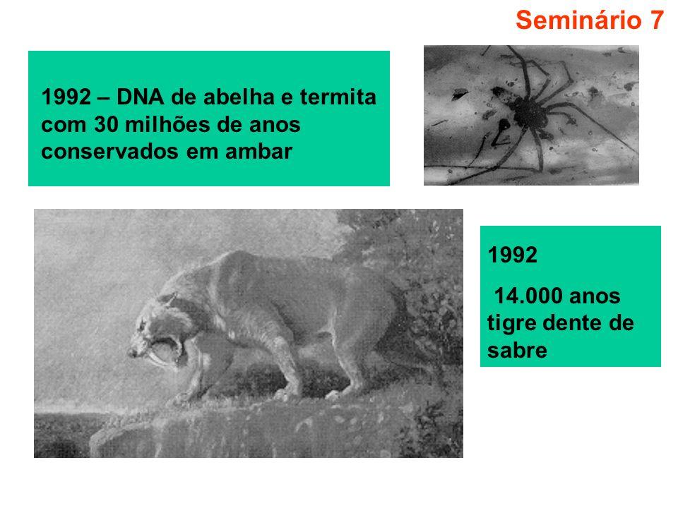 Seminário 7 1992 – DNA de abelha e termita com 30 milhões de anos conservados em ambar.