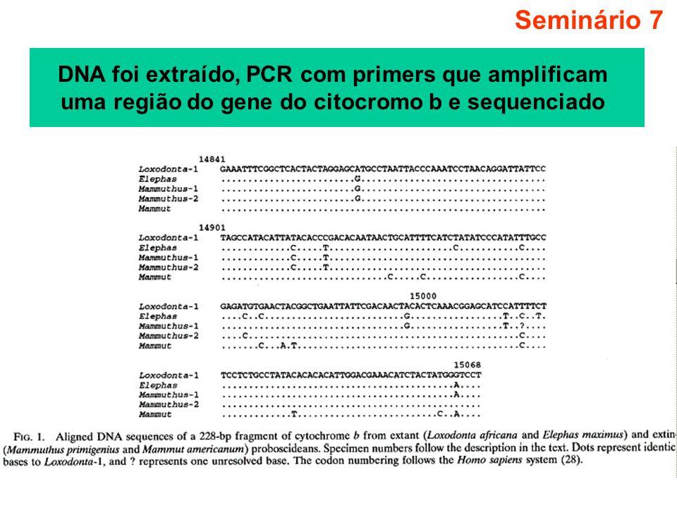 Seminário 7 DNA foi extraído, PCR com primers que amplificam uma região do gene do citocromo b e sequenciado.